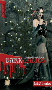 cover darkladies1 3 story